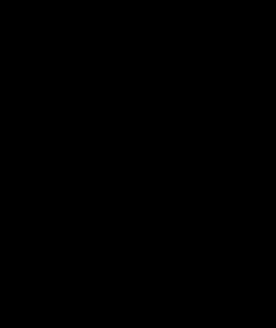 bassschluessel schwarz
